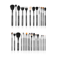 Sigma Complete Brush Kit