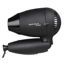 Cruise Travel Hair Dryer